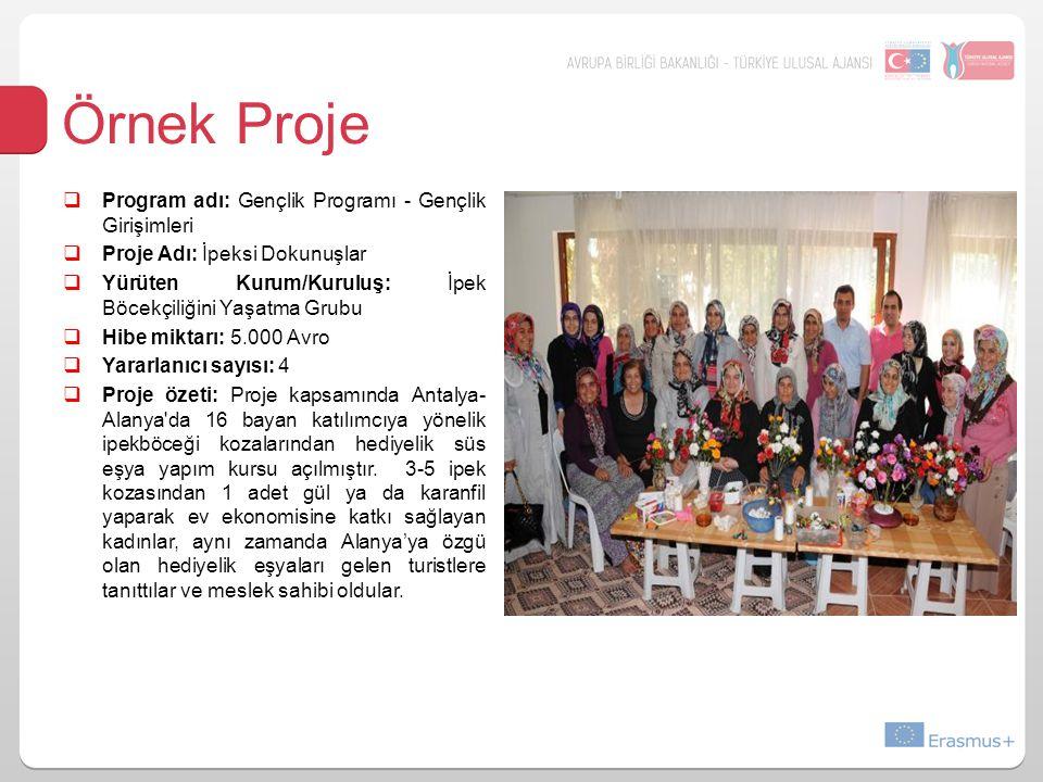 Örnek Proje  Program adı: Gençlik Programı - Gençlik Girişimleri  Proje Adı: İpeksi Dokunuşlar  Yürüten Kurum/Kuruluş: İpek Böcekçiliğini Yaşatma Grubu  Hibe miktarı: 5.000 Avro  Yararlanıcı sayısı: 4  Proje özeti: Proje kapsamında Antalya- Alanya da 16 bayan katılımcıya yönelik ipekböceği kozalarından hediyelik süs eşya yapım kursu açılmıştır.