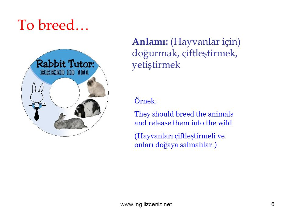 www.ingilizceniz.net6 To breed… Anlamı: (Hayvanlar için) doğurmak, çiftleştirmek, yetiştirmek Örnek: They should breed the animals and release them into the wild.
