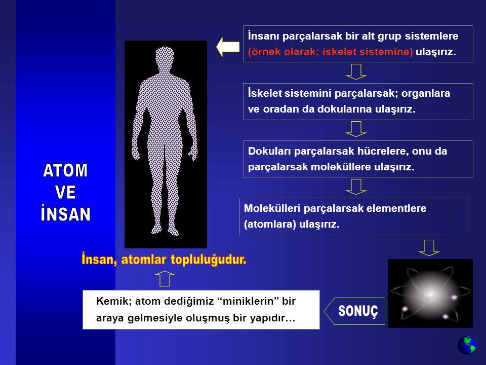 İnsanı parçalarsak bir alt grup sistemlere (örnek olarak; iskelet sistemine) ulaşırız. İskelet sistemini parçalarsak; organlara ve oradan da dokuların