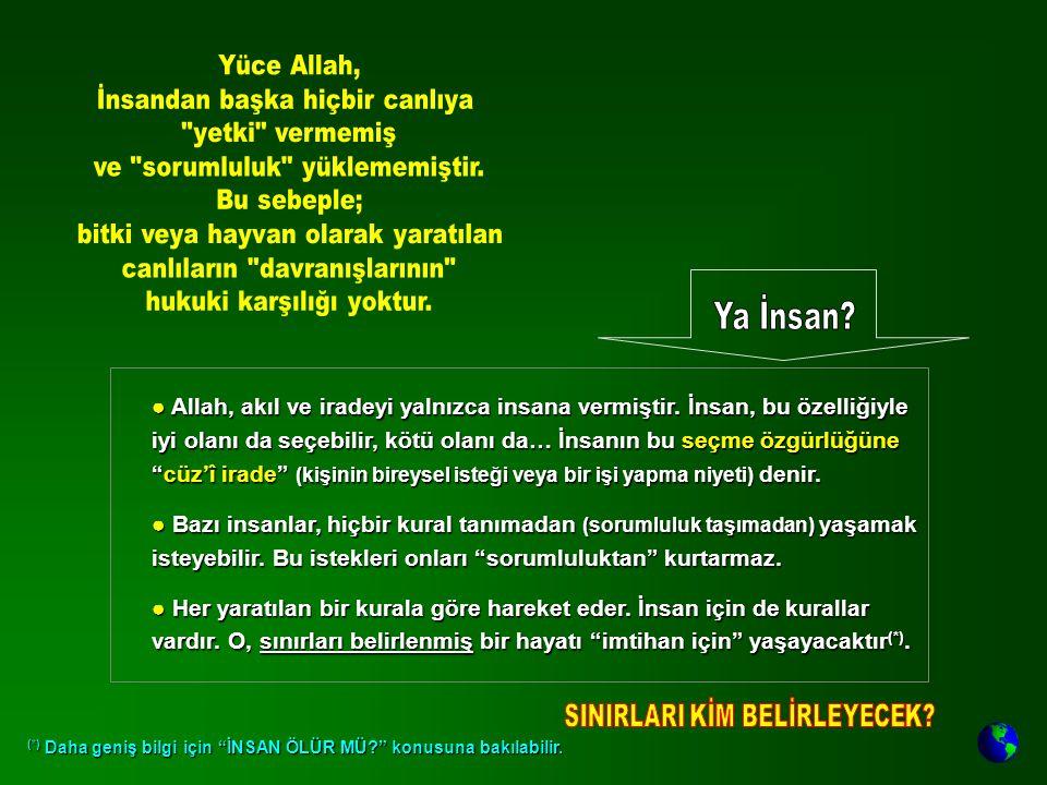 """● Allah, akıl ve iradeyi yalnızca insana vermiştir. İnsan, bu özelliğiyle iyi olanı da seçebilir, kötü olanı da… İnsanın bu seçme özgürlüğüne """"cüz'î i"""
