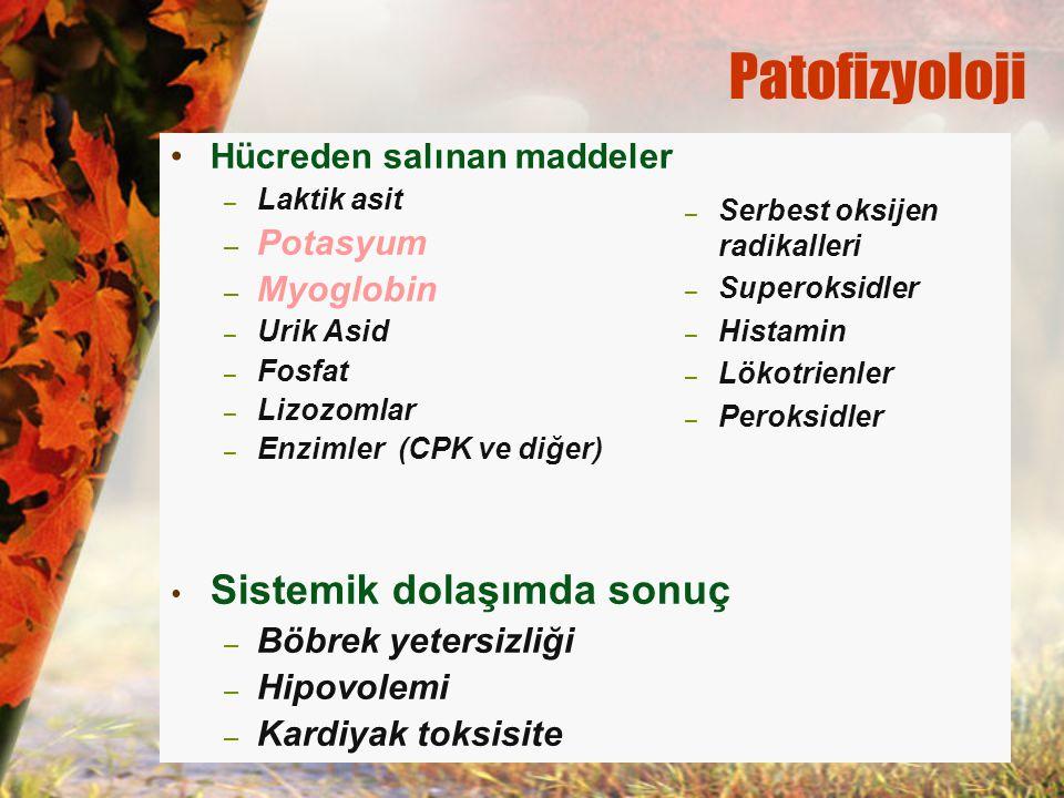 Patofizyoloji Hücreden salınan maddeler – Laktik asit – Potasyum – Myoglobin – Urik Asid – Fosfat – Lizozomlar – Enzimler (CPK ve diğer) Sistemik dola