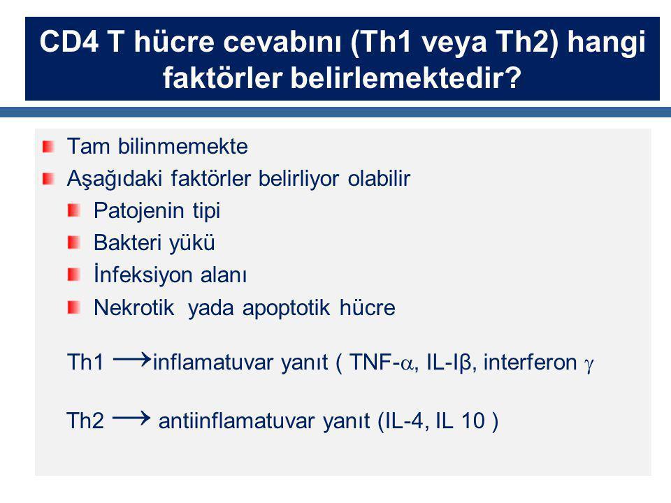 CD4 T hücre cevabını (Th1 veya Th2) hangi faktörler belirlemektedir? Tam bilinmemekte Aşağıdaki faktörler belirliyor olabilir Patojenin tipi Bakteri y