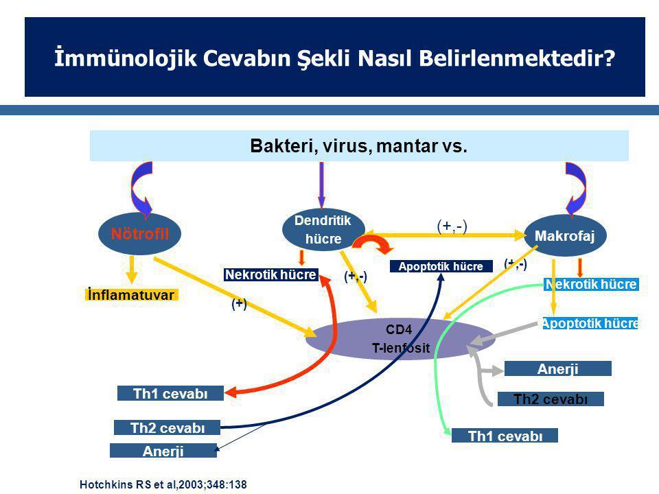 Bakteri, virus, mantar vs. Nötrofil Dendritik hücre Makrofaj CD4 T-lenfosit Anerji Th1 cevabı Th2 cevabı Th1 cevabı Th2 cevabı Anerji Nekrotik hücre A
