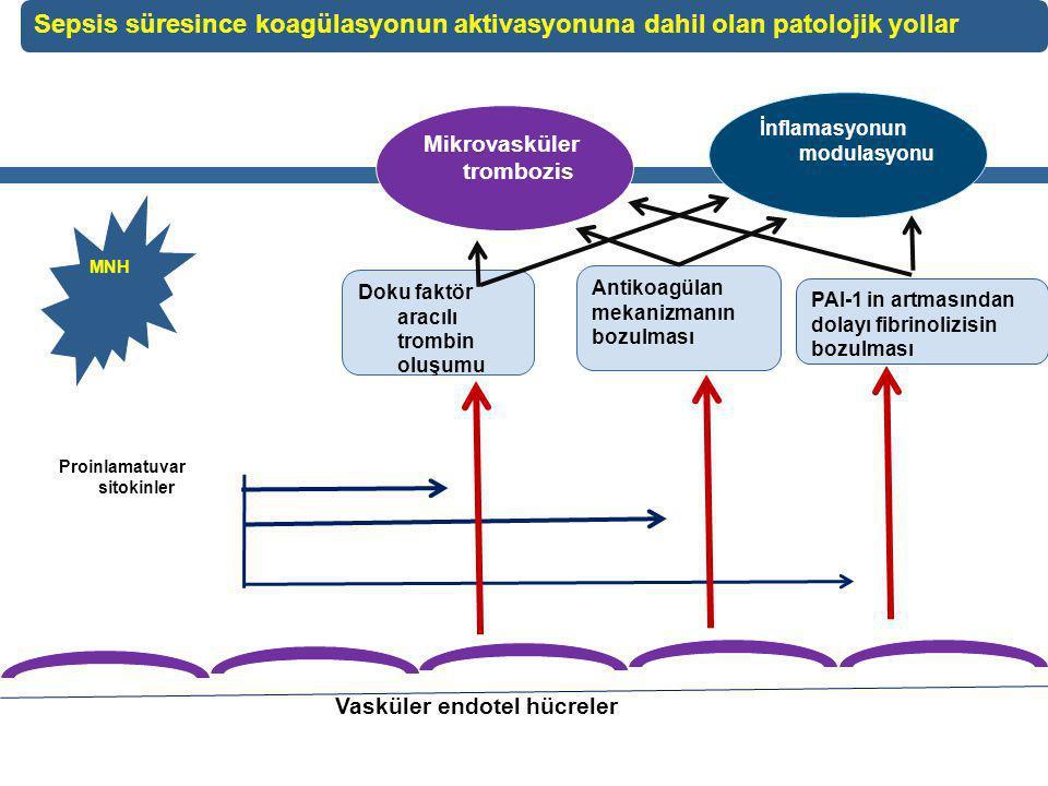 MNH Proinlamatuvar sitokinler Doku faktör aracılı trombin oluşumu Antikoagülan mekanizmanın bozulması PAI-1 in artmasından dolayı fibrinolizisin bozulması Mikrovasküler trombozis İnflamasyonun modulasyonu Vasküler endotel hücreler Sepsis süresince koagülasyonun aktivasyonuna dahil olan patolojik yollar