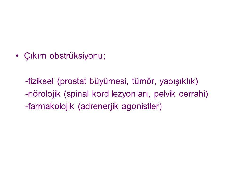 Çıkım obstrüksiyonu; -fiziksel (prostat büyümesi, tümör, yapışıklık) -nörolojik (spinal kord lezyonları, pelvik cerrahi) -farmakolojik (adrenerjik ago