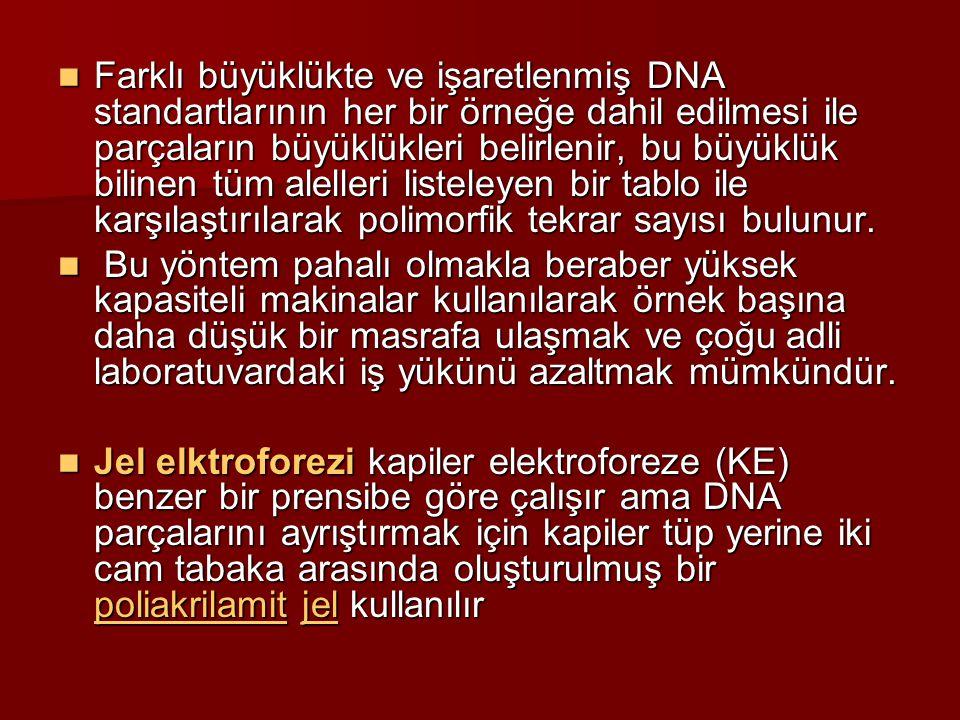Farklı büyüklükte ve işaretlenmiş DNA standartlarının her bir örneğe dahil edilmesi ile parçaların büyüklükleri belirlenir, bu büyüklük bilinen tüm al
