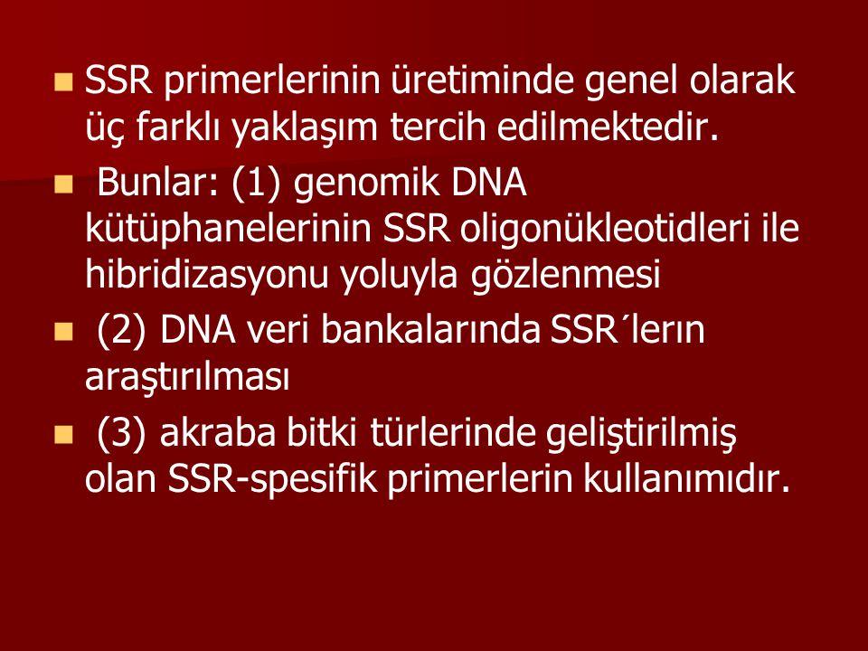 SSR primerlerinin üretiminde genel olarak üç farklı yaklaşım tercih edilmektedir. Bunlar: (1) genomik DNA kütüphanelerinin SSR oligonükleotidleri ile