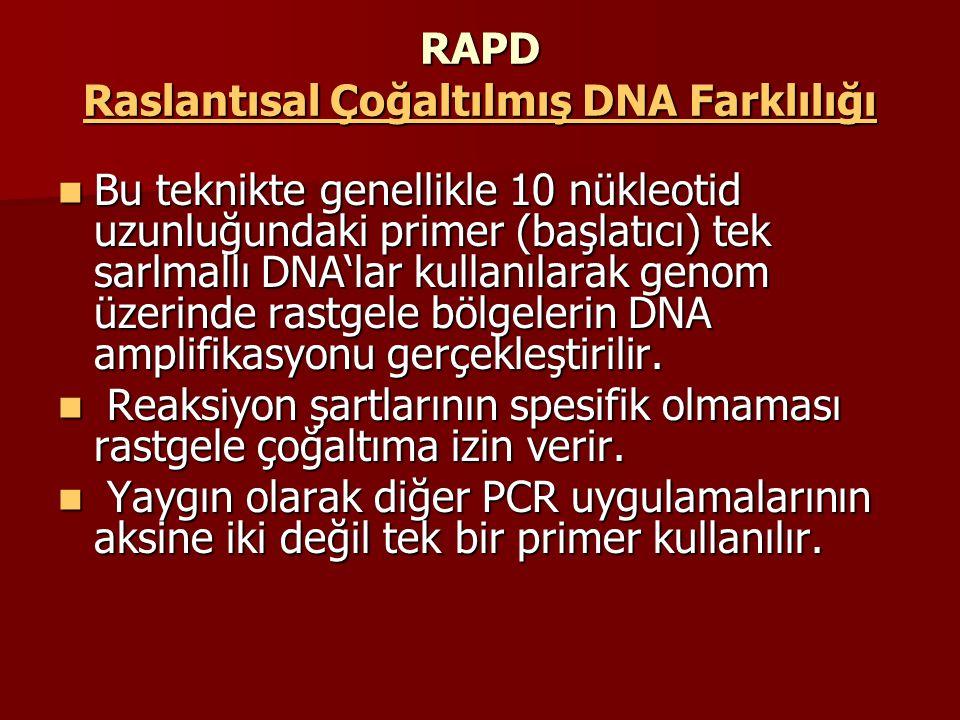 RAPD Raslantısal Çoğaltılmış DNA Farklılığı Bu teknikte genellikle 10 nükleotid uzunluğundaki primer (başlatıcı) tek sarlmallı DNA'lar kullanılarak ge