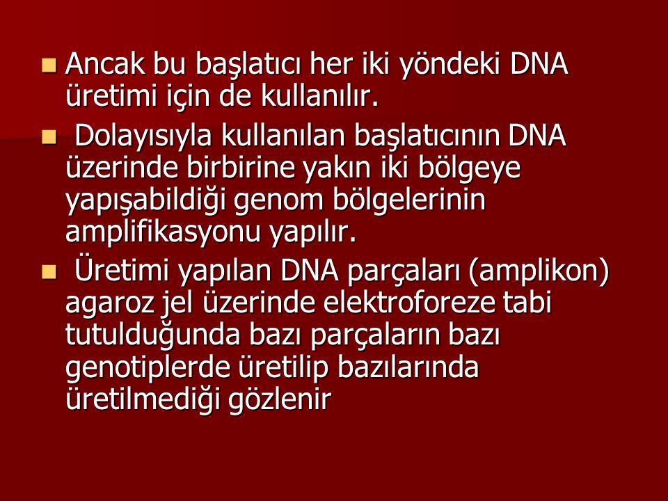 Ancak bu başlatıcı her iki yöndeki DNA üretimi için de kullanılır. Ancak bu başlatıcı her iki yöndeki DNA üretimi için de kullanılır. Dolayısıyla kull