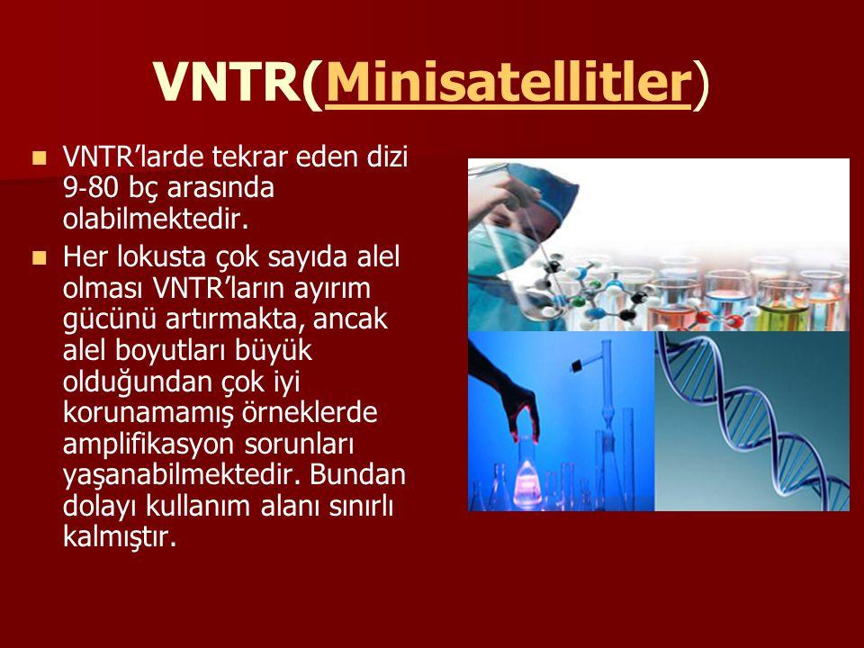 VNTR(Minisatellitler) VNTR'larde tekrar eden dizi 9 ‐ 80 bç arasında olabilmektedir. Her lokusta çok sayıda alel olması VNTR'ların ayırım gücünü artır