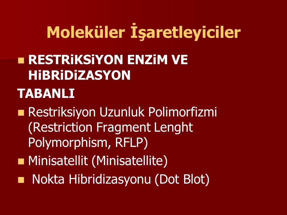 POLiMERAZ ZiNCiR REAKSiYONU VE RESTRiKSiYON ENZiM TABANLI Restriksiyon Uzunluk Polimorfizmi-Polimeraz Zincir Reaksiyonu (Restriction Fragment Length Polymorphism- PCR, RFLP-PCR) Polimeraz Zincir Reaksiyonu-Restriksiyon Uzunluk Polimorfizmi (PCR-Restriction Fragment Length Polymorphism, PCR-RFLP) veya Bölünerek- Çoğaltılmış Polimorfik DNA Dizileri (Cleavage Amplified Polymorphic Sequence, CAPS) Terminal Restriksiyon Uzunluk Polimorfizmi (Terminal Restriction Fragment Length Polymorphism (T-RFLP) Çoğaltılmış Parça Uzunluk Polimorfizmi (Amplified Fragment Length Polymorphism (AFLP)