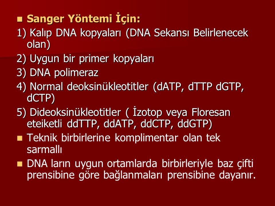 Sanger Yöntemi İçin: Sanger Yöntemi İçin: 1) Kalıp DNA kopyaları (DNA Sekansı Belirlenecek olan) 2) Uygun bir primer kopyaları 3) DNA polimeraz 4) Nor