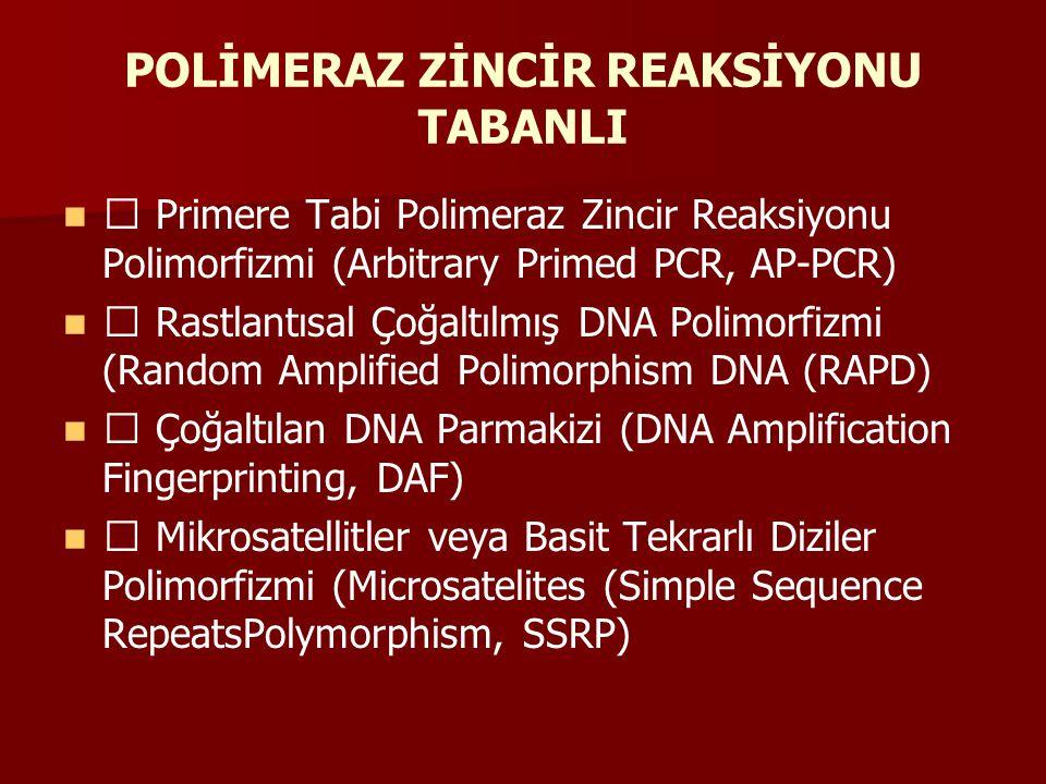 Çoğaltılan Sekans Polimorfizmi (Sequence Related Amplified Polymorphism, SRAP Belirli Dizileri Çoğaltılan Bölgeler (Sequence Characterised Amplified Region, SCAR) Basit Sekans Tekrarları Arası Polimorfizmi (Inter simple sequence repeats, ISSR) Doğrudan Çoğaltılan Uzunluk Polimorfizmi (Direct Amplification of Length Polymorphism, DALP) Allele Bağlı Özgün Primerler (Allele-specific Associated Primers, ASAPs) Ligaz Zincir Reaksiyonu (LCR)