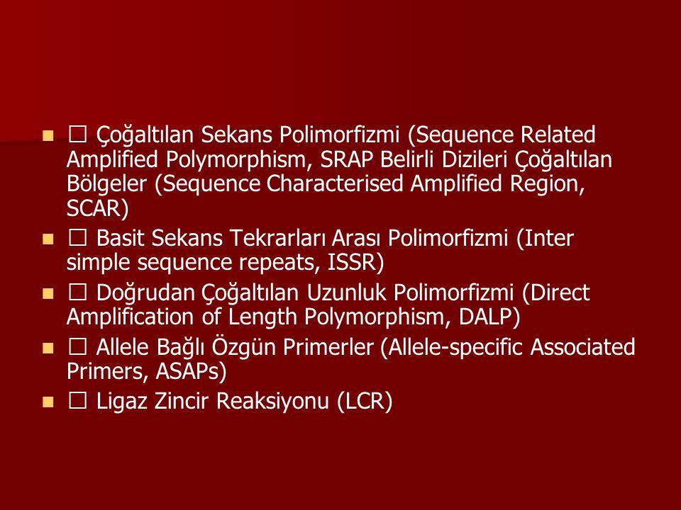 DNA DİZİ VE ENZİM TABANLI Klevaz Kısım Uzunluk Polimorfizmi (Cleavase Fragment length polymorphism, CFLP) Kimyasal Mismaç Kesimi (Chemical cleavage of mismatches (CCM)) DNA DİZİ TABANLI Tek Nükleotid Polimorfizmi (Single Nucleotide Polymorphism, SNP) Heterodupleks Analizi (Heteroduplex analysis, HA) Tek Sarmal Konformasyon Polimorfizmi (Single stranded conformational polymorphism, SSCP) Doğrudan Dizi Analizi (Direct Sequencing) Genler Arası Bölgeler (Internal Transcribed Spacers, ITS) Rastlantısal Çoğaltılmış Mikrosatellit Polimorfizmi (Randomly Amplified Microsatellite Polymorphisms, RAMPO)