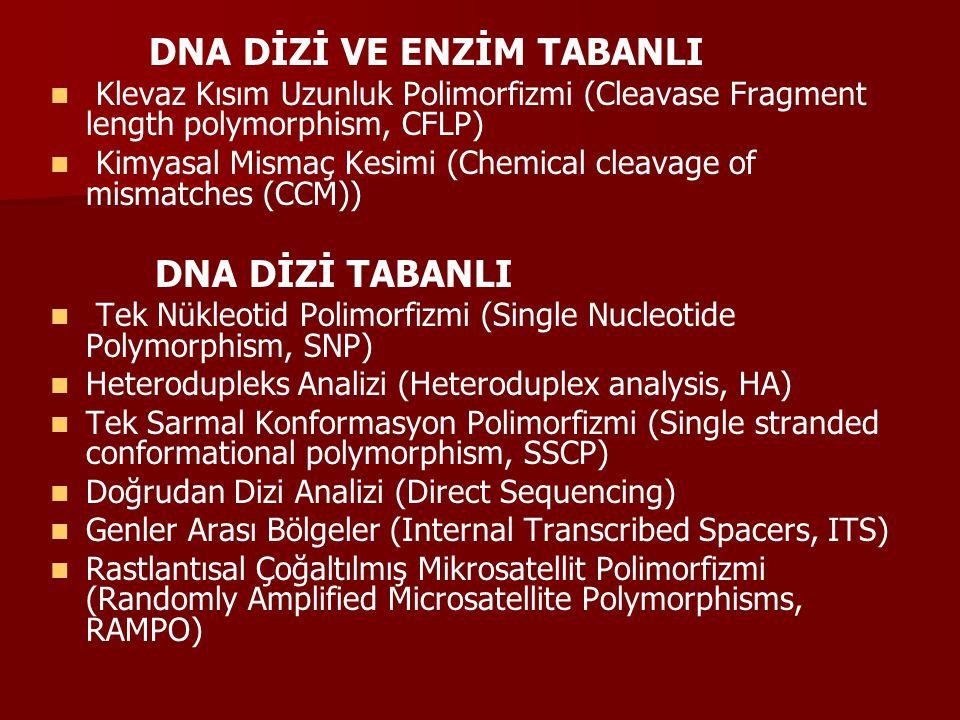 RFLP analizi Restriction parça uzunluğu polimorfizmi Restriction parça uzunluğu polimorfizmi Restriction parça uzunluğu polimorfizmi Restriksiyon endonükleaz enzimlerinin kullanıldığı bu yöntemde, Restriksiyon endonükleazlar, restriksiyon bölgeleri olarak bilinen çift zincirli DNA nın sadece spesifik baz dizilerini tanımakta ve diziyi bu bölgelerden kesmektedir.
