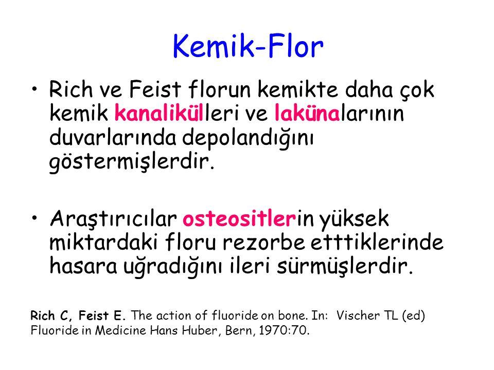Kemik-Flor Rich ve Feist florun kemikte daha çok kemik kanalikülleri ve lakünalarının duvarlarında depolandığını göstermişlerdir. Araştırıcılar osteos