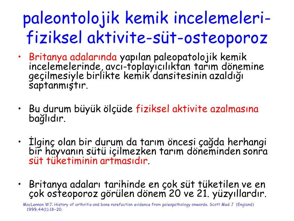 Osteoporoz teşhis