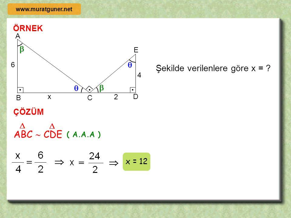 ÖRNEK ÇÖZÜM A B C D E x 5 3 2 m ( BAC ) = m ( BDE ) ise x = ?   5 A B C D E x 3 2 BAC  EDC    ( A.A.A ) Başarı tatlıdır ama çoğunlukla ter kokar