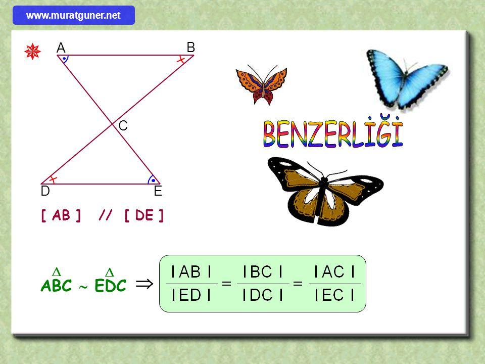 ÖRNEK ÇÖZÜM ABC bir üçgen G ağırlık merkezi [ KL ] // [ BC ] old. göre AKL üçgeninin çevresi kaç cm dir? B K A L C G 12 5 6 Ağırlık merkezinden kenara