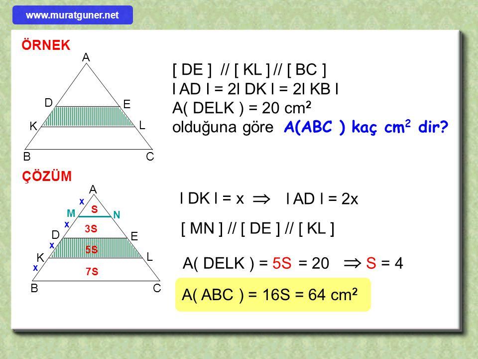     Kenarları eşit aralıklı paralellerle bölünmüş olan üçgenlerde alanlar 1, 3, 5, 7, ….. gibi orantılı olarak artar. Paralel kenarlar da 1,2,3,4,
