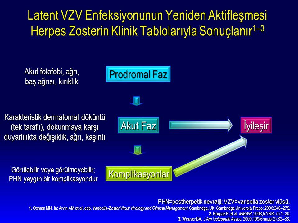 Latent VZV Enfeksiyonunun Yeniden Aktifleşmesi Herpes Zosterin Klinik Tablolarıyla Sonuçlanır 1–3 PHN=postherpetik nevralji; VZV=varisella zoster viüs