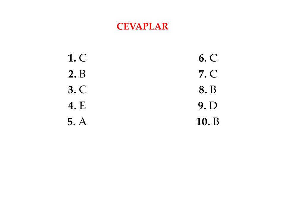 CEVAPLAR 1. C 2. B 3. C 4. E 5. A 6. C 7. C 8. B 9. D 10. B