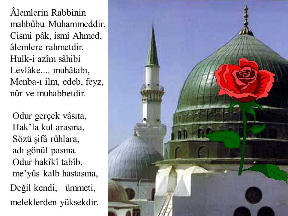 Âlemlerin Rabbinin mahbûbu Muhammeddir. Cismi pâk, ismi Ahmed, âlemlere rahmetdir.
