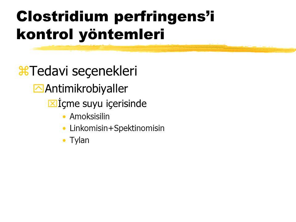Clostridium perfringens'i kontrol yöntemleri zTedavi seçenekleri yAntimikrobiyaller xİçme suyu içerisinde Amoksisilin Linkomisin+Spektinomisin Tylan