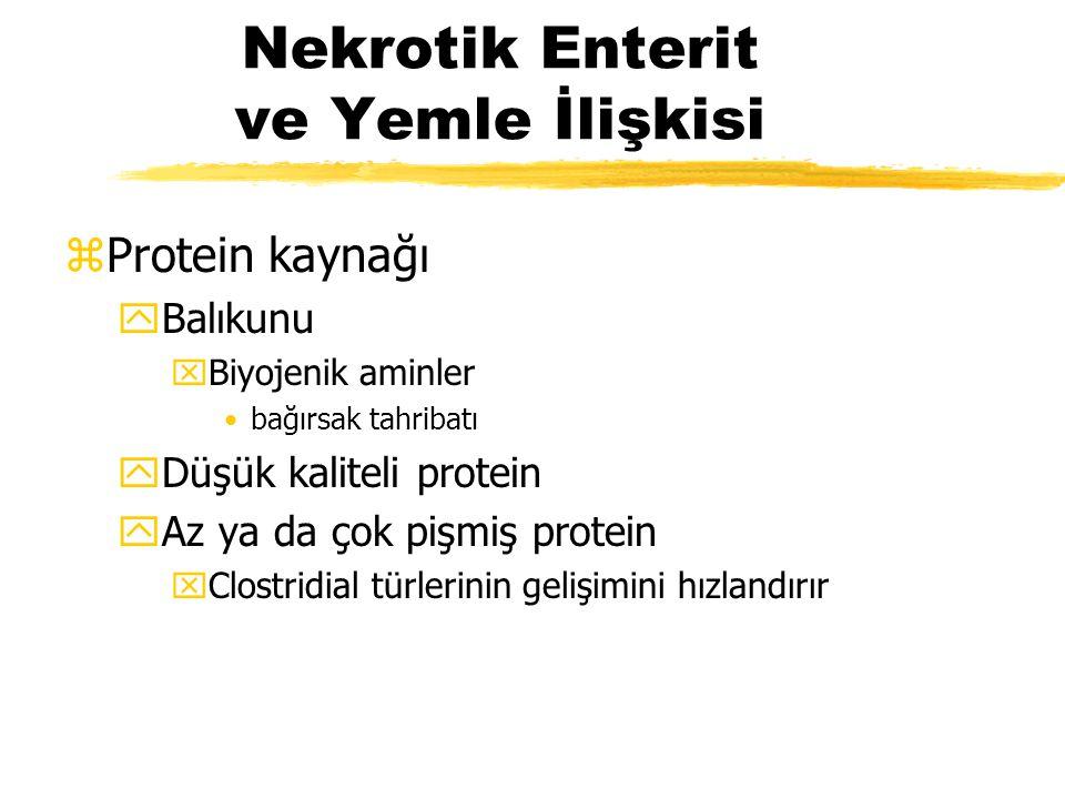 Nekrotik Enterit ve Yemle İlişkisi zProtein kaynağı yBalıkunu xBiyojenik aminler bağırsak tahribatı yDüşük kaliteli protein yAz ya da çok pişmiş prote