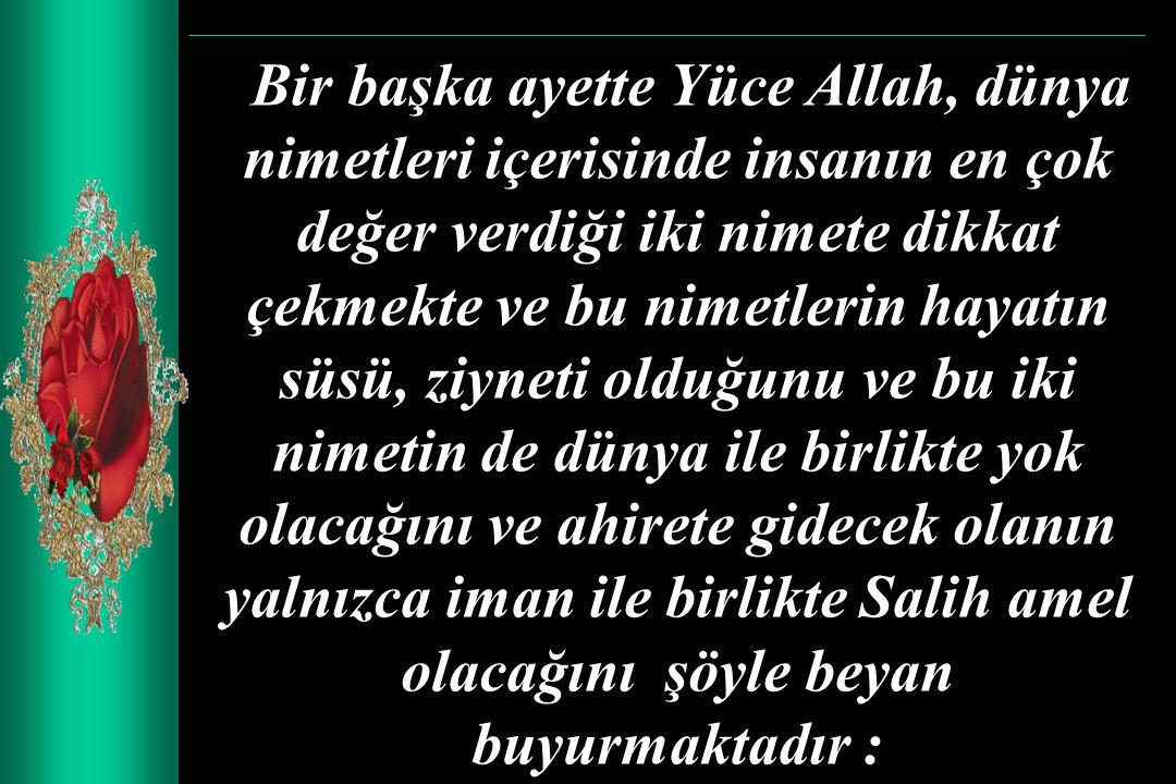 Bir başka ayette Yüce Allah, dünya nimetleri içerisinde insanın en çok değer verdiği iki nimete dikkat çekmekte ve bu nimetlerin hayatın süsü, ziyneti