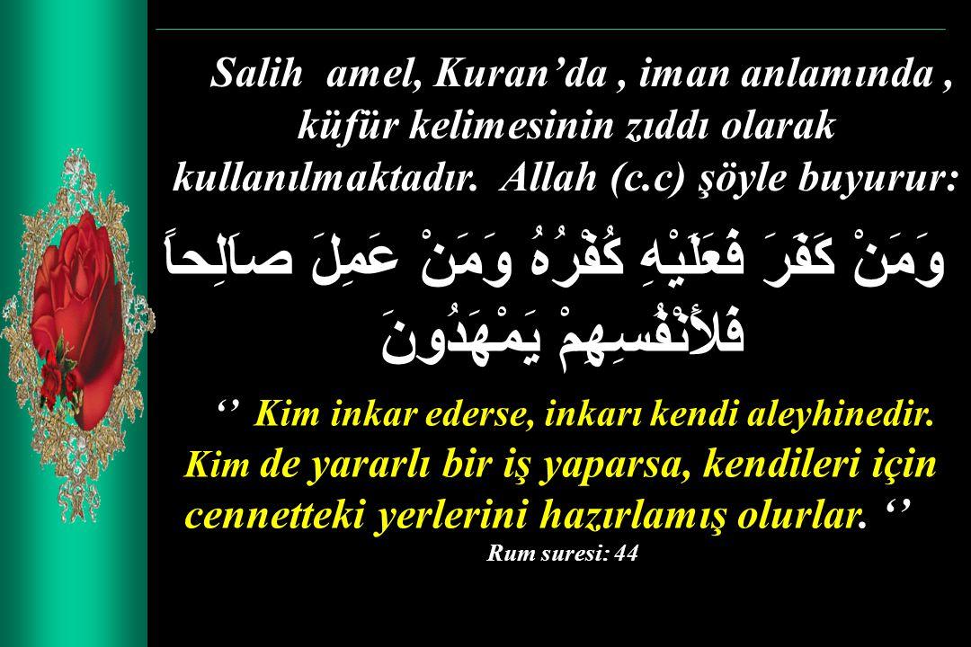 Salih amel, Kuran'da, iman anlamında, küfür kelimesinin zıddı olarak kullanılmaktadır. Allah (c.c) şöyle buyurur: وَمَنْ كَفَرَ فَعَلَيْهِ كُفْرُهُ وَ
