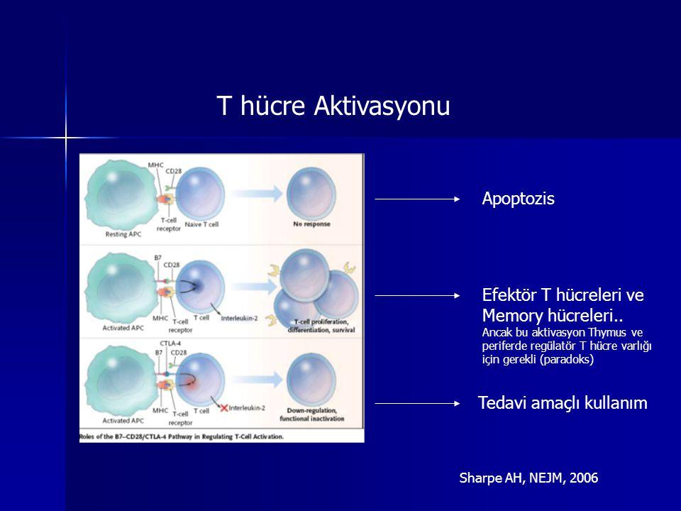 Apoptozis Efektör T hücreleri ve Memory hücreleri.. Ancak bu aktivasyon Thymus ve periferde regülatör T hücre varlığı için gerekli (paradoks) Tedavi a