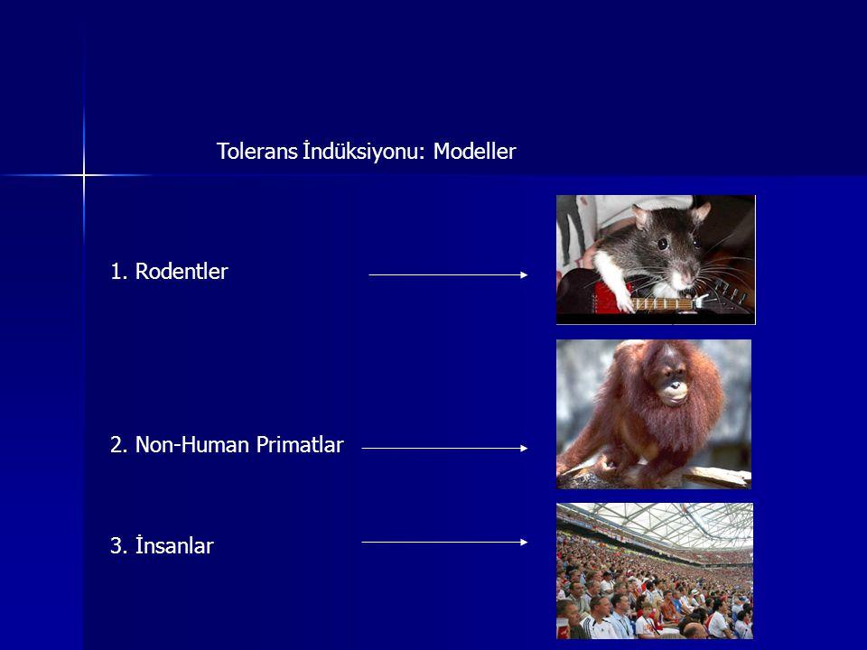 Tolerans İndüksiyonu: Modeller 1. Rodentler 2. Non-Human Primatlar 3. İnsanlar