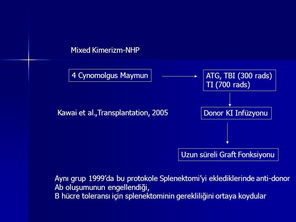 Mixed Kimerizm-NHP Kawai et al.,Transplantation, 2005 4 Cynomolgus Maymun ATG, TBI (300 rads) TI (700 rads) Donor KI Infüzyonu Uzun süreli Graft Fonks