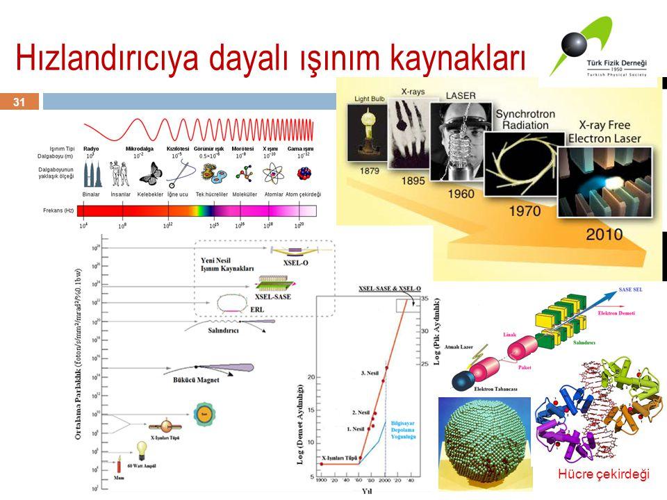 Hızlandırıcıya dayalı ışınım kaynakları 31 Hücre çekirdeği