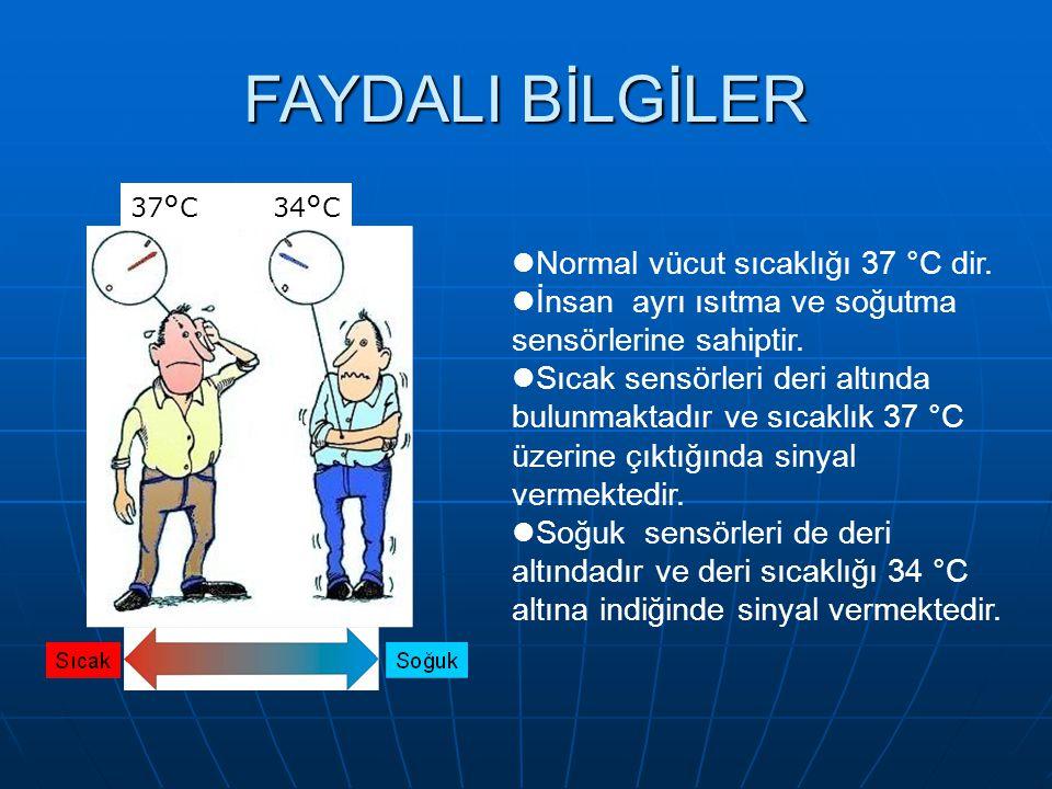 FAYDALI BİLGİLER 37 ° C 34 ° C Normal vücut sıcaklığı 37 °C dir.