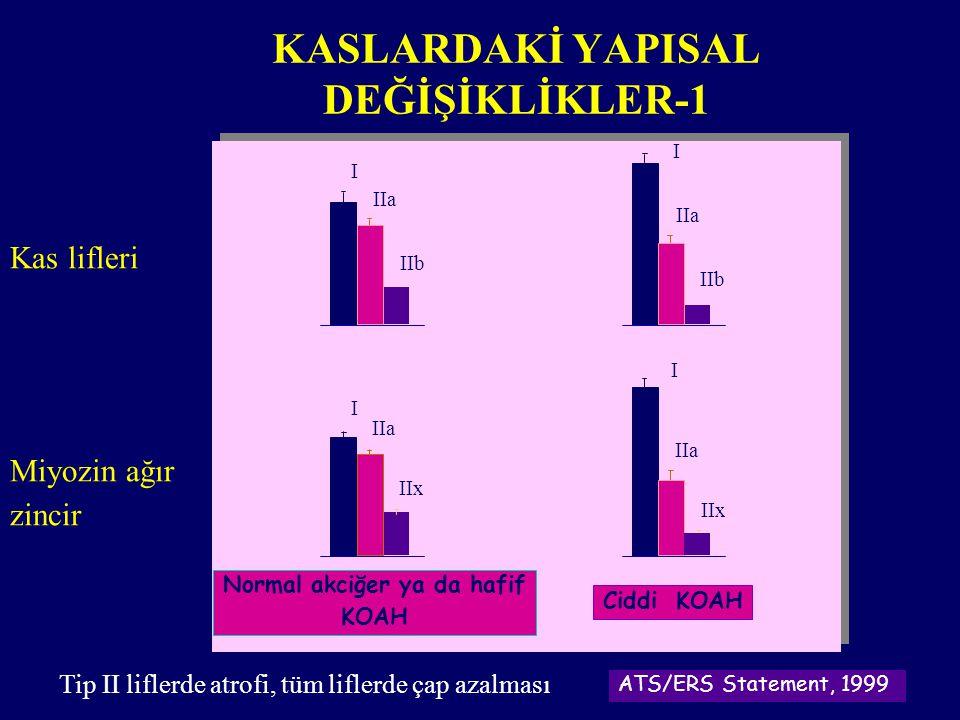 Normal akciğer ya da hafif KOAH Ciddi KOAH ATS/ERS Statement, 1999 Kas lifleri I IIa IIb IIa IIb I Miyozin ağır zincir IIx I IIa IIx I IIa KASLARDAKİ