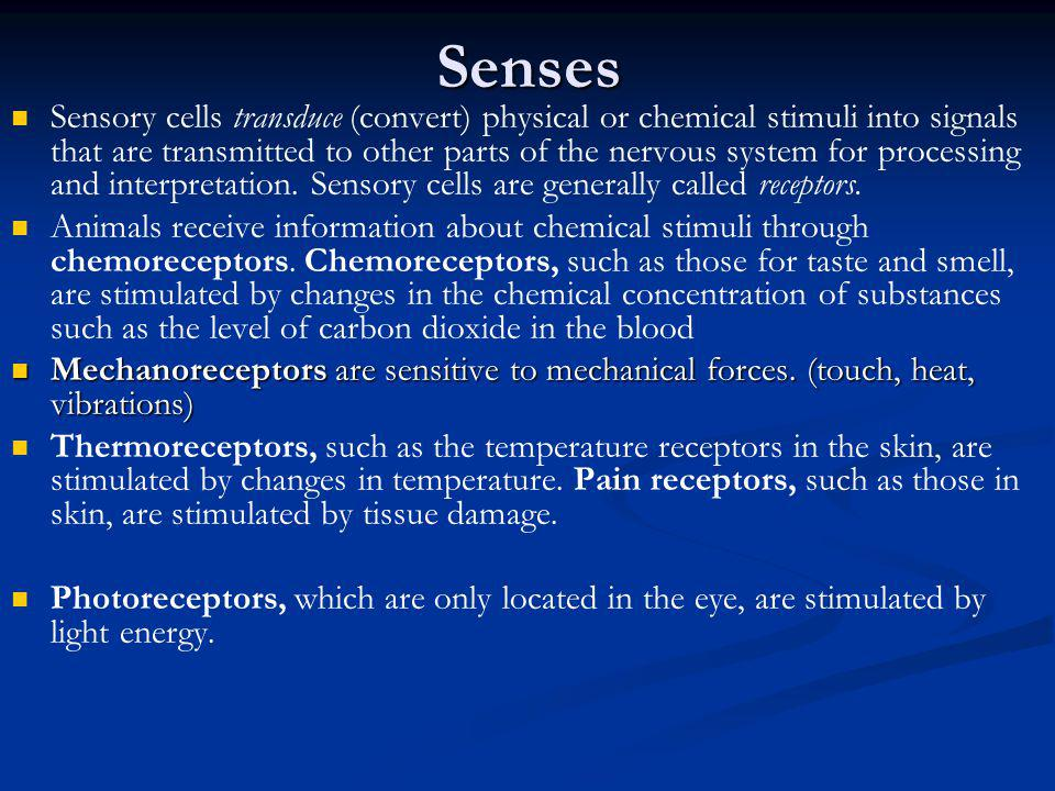 Senses Sensory cells transduce (convert) physical or chemical stimuli into signals that are transmitted to other parts of the nervous system for proce