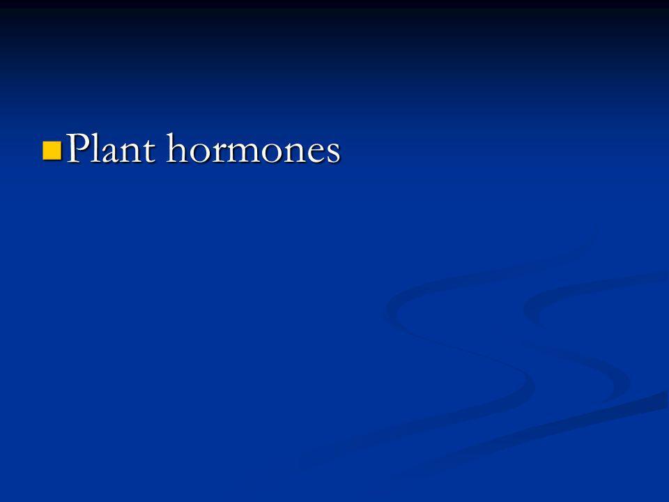 Plant hormones Plant hormones