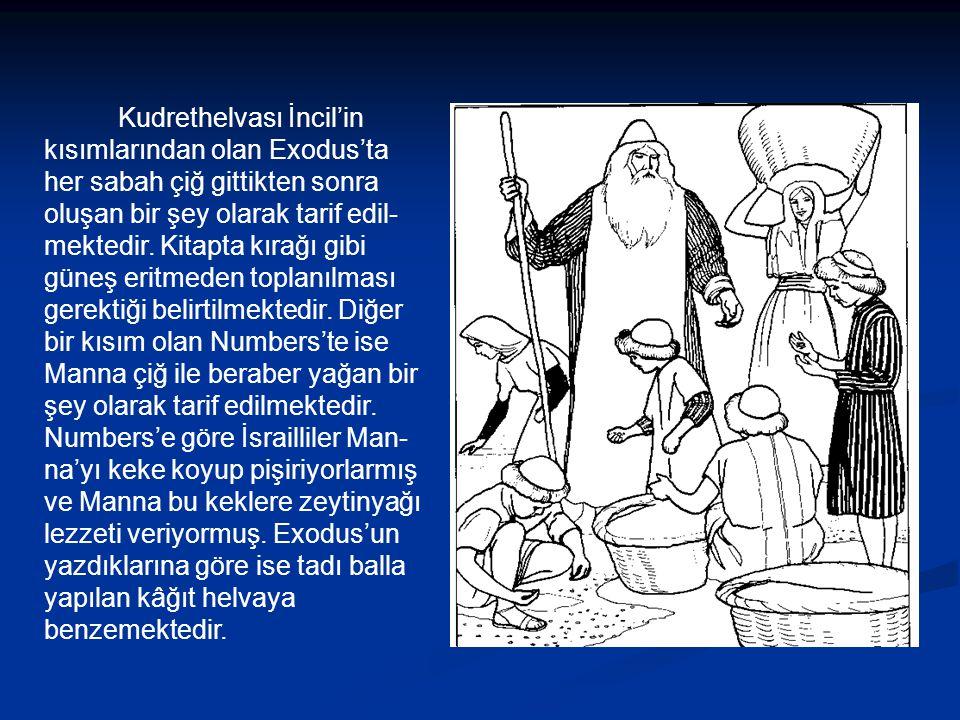 Kudrethelvası İncil'in kısımlarından olan Exodus'ta her sabah çiğ gittikten sonra oluşan bir şey olarak tarif edil- mektedir.