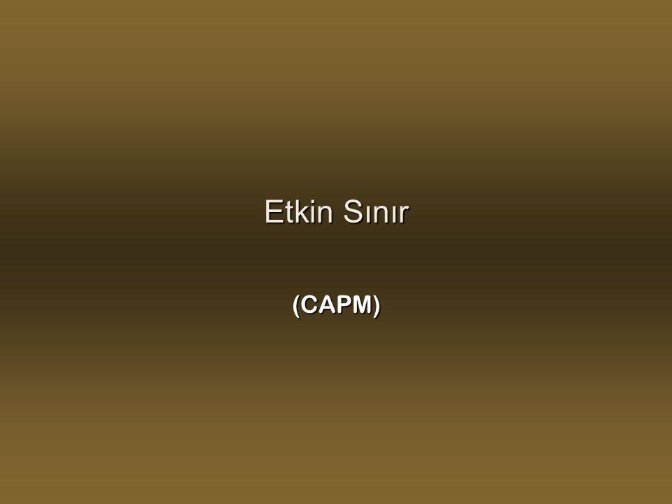 Etkin Sınır (CAPM)