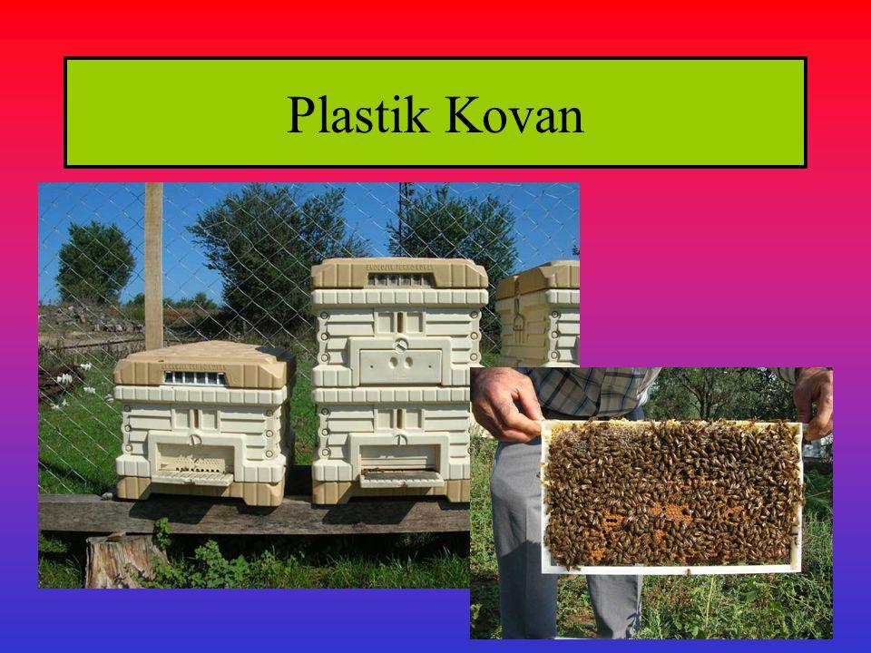 Plastik Kovan
