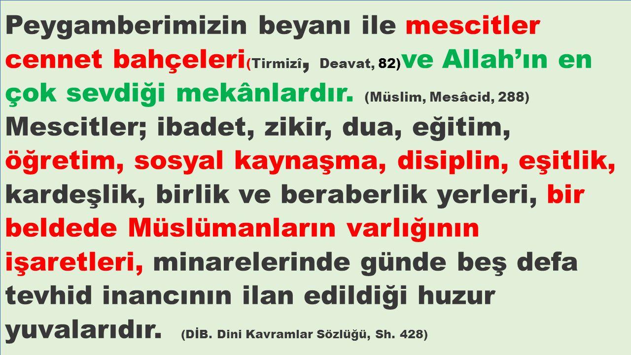 Peygamberimizin beyanı ile mescitler cennet bahçeleri (Tirmizî, Deavat, 82) ve Allah'ın en çok sevdiği mekânlardır. (Müslim, Mesâcid, 288) Mescitler;