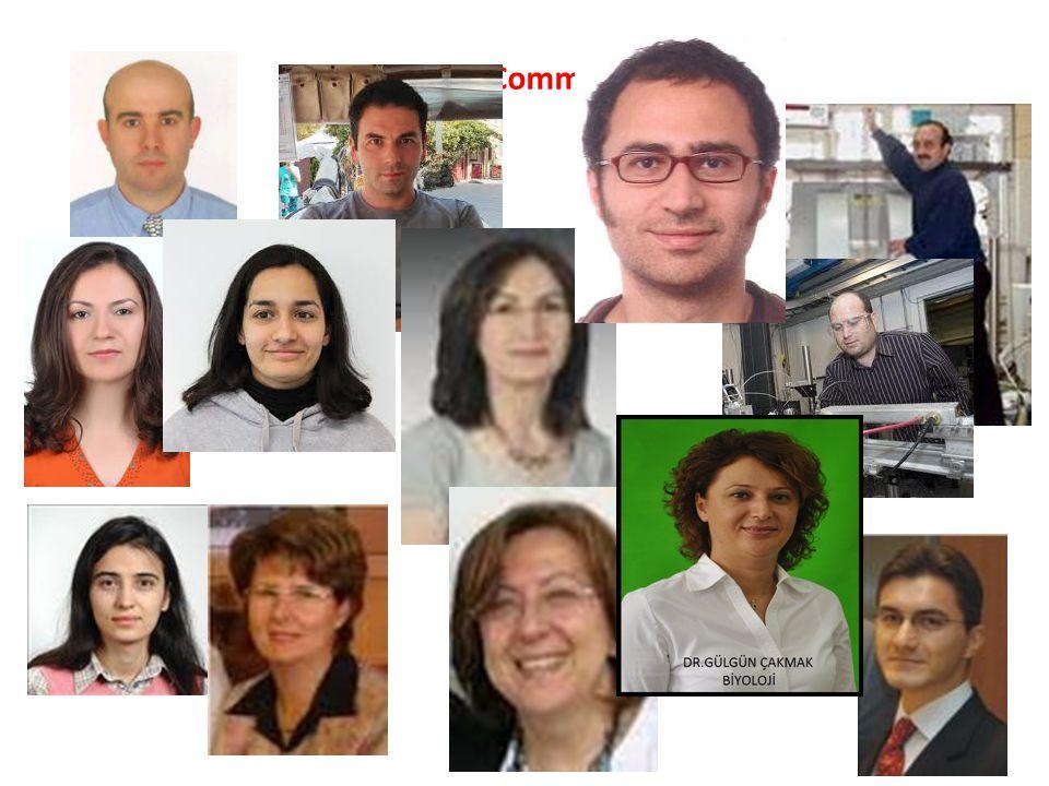 User Committee
