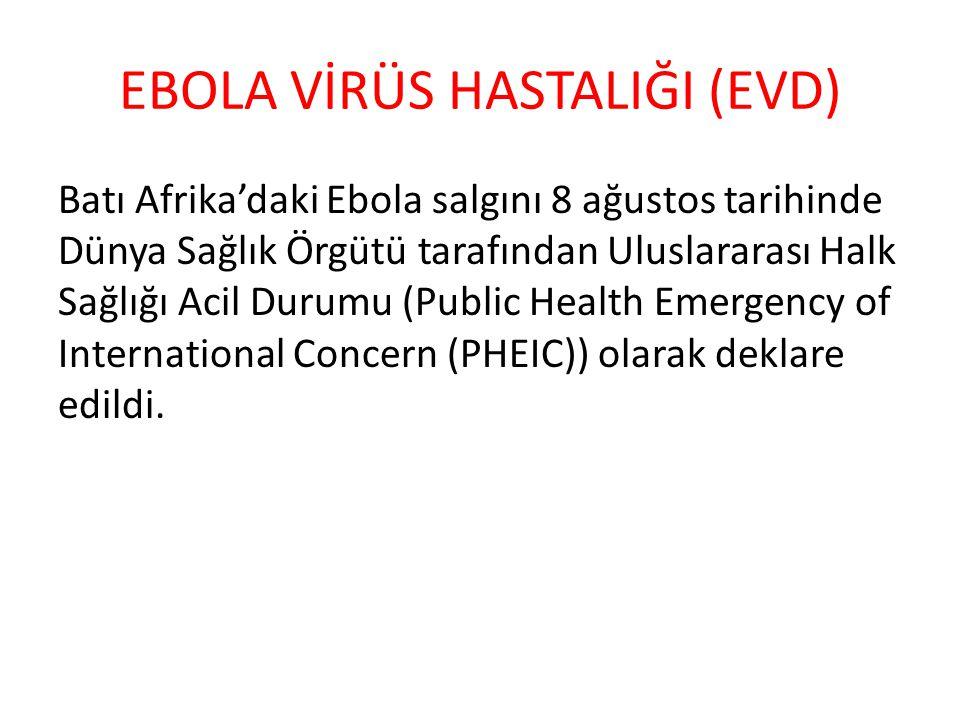 EBOLA VİRÜS HASTALIĞI (EVD) Batı Afrika'daki Ebola salgını 8 ağustos tarihinde Dünya Sağlık Örgütü tarafından Uluslararası Halk Sağlığı Acil Durumu (P