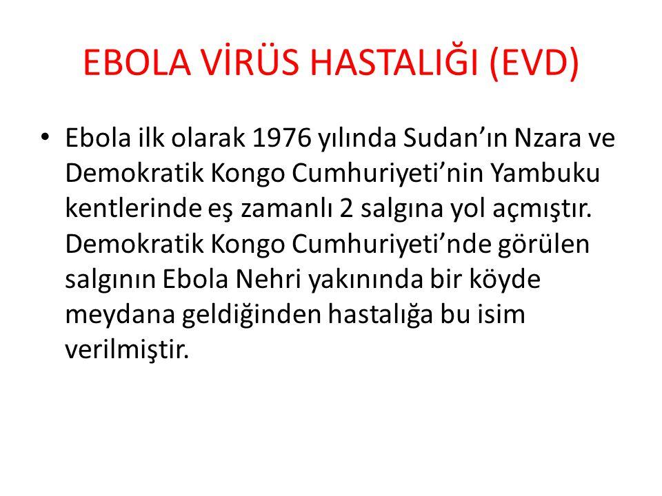 EBOLA VİRÜS HASTALIĞI (EVD) Ebola ilk olarak 1976 yılında Sudan'ın Nzara ve Demokratik Kongo Cumhuriyeti'nin Yambuku kentlerinde eş zamanlı 2 salgına