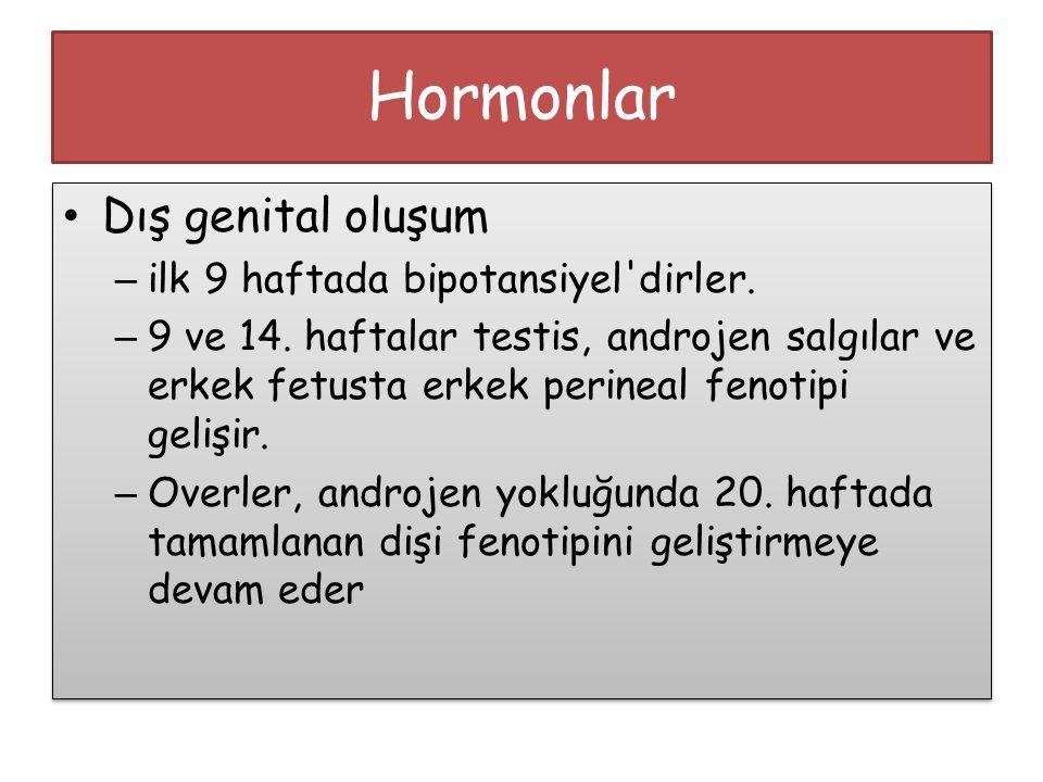 Hormonlar Dış genital oluşum – ilk 9 haftada bipotansiyel'dirler. – 9 ve 14. haftalar testis, androjen salgılar ve erkek fetusta erkek perineal fenoti
