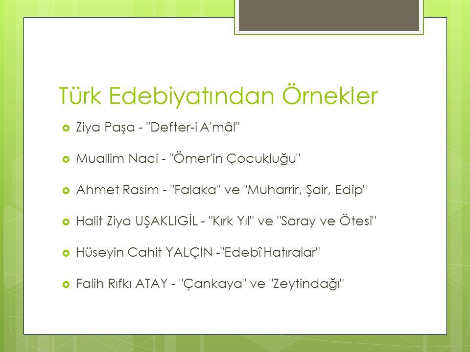 Türk Edebiyatından Örnekler  Ziya Paşa -