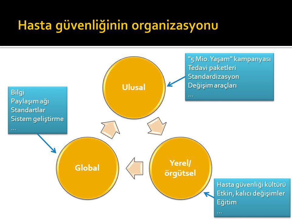 Ulusal Yerel/ örgütsel Global 5 Mio.