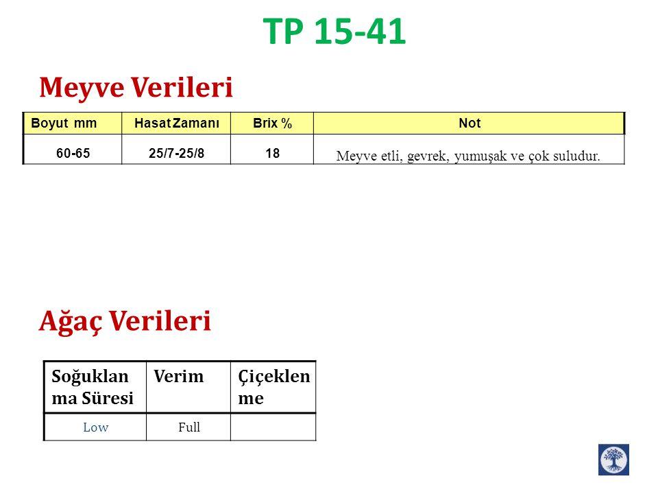 TP 15-41 Çiçeklen me VerimSoğuklan ma Süresi FullLow Meyve Verileri Ağaç Verileri NotBrix %Hasat ZamanıBoyut mm Meyve etli, gevrek, yumuşak ve çok sul